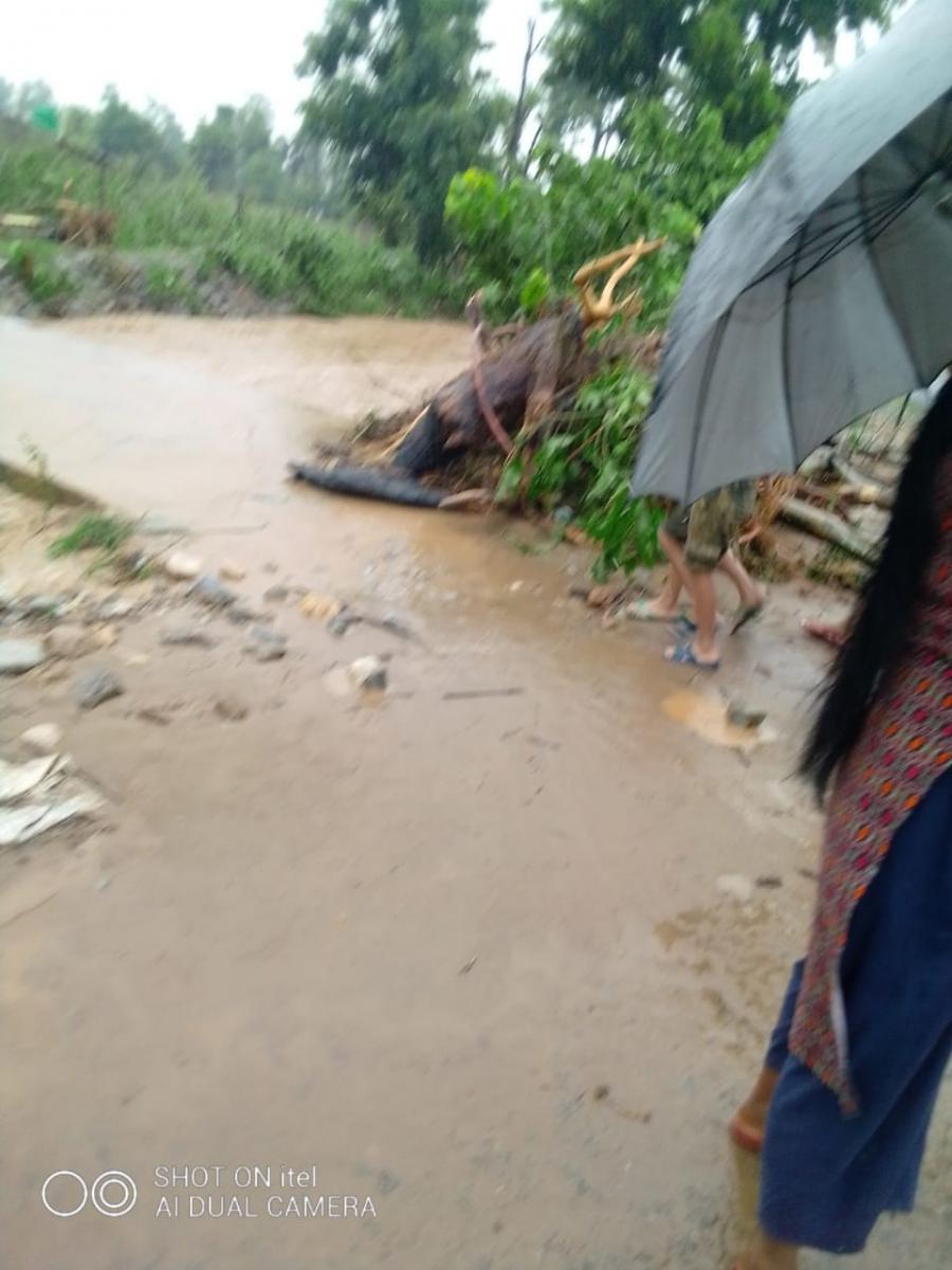 Überschwemmung in Chitwan